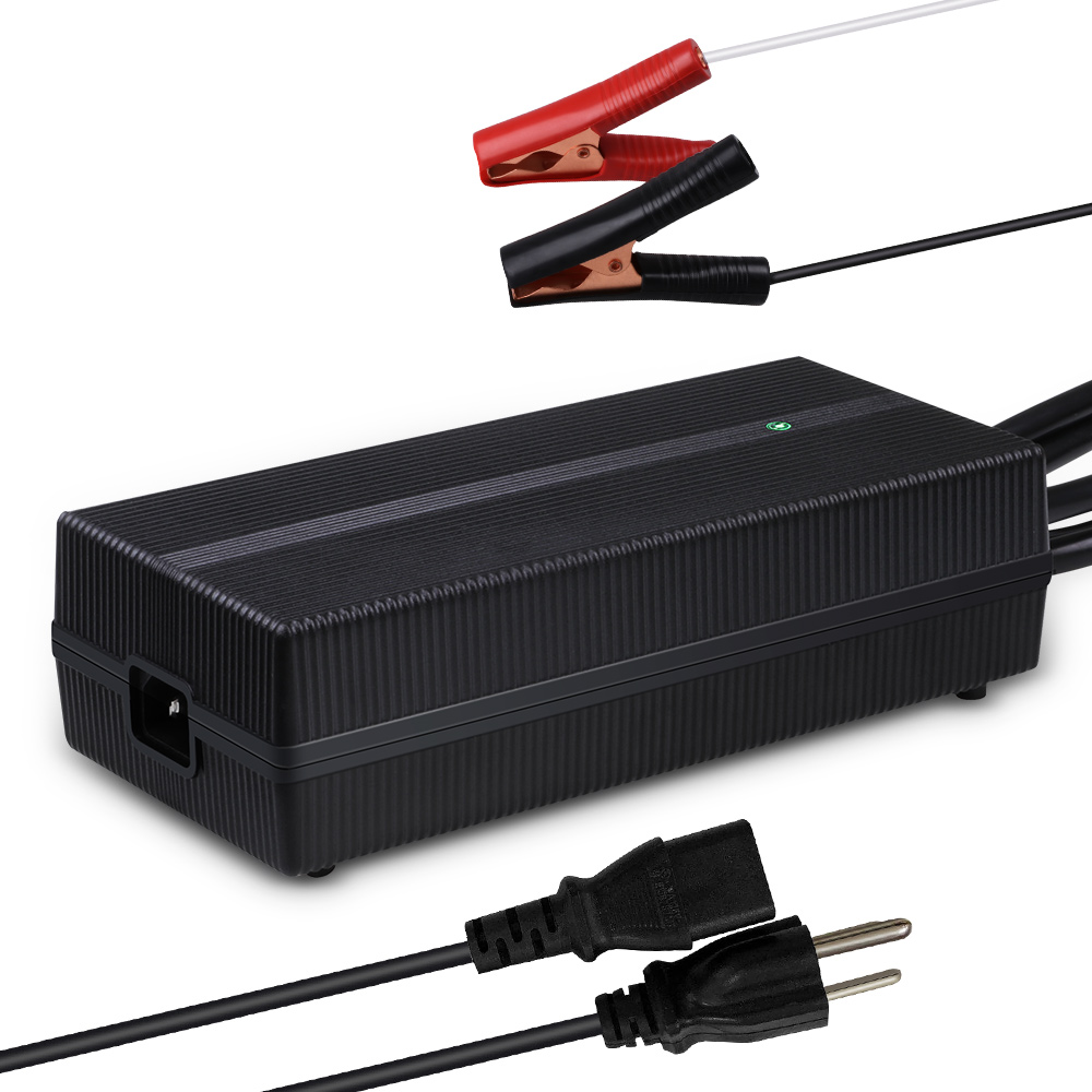 20A LFP Portable Battery Charger